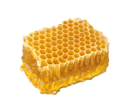 Honeycomb piece isolated on white background. Honey comb slice for package design