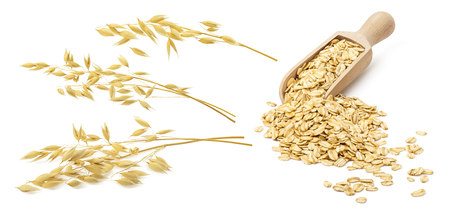 Oatmeal set. Oat ears and wooden scoop with rolled grains isolated on white background. With clipping path