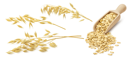 Oatmeal set. Oat ears and scoop with rolled grains isolated on white background. With clipping path for package design