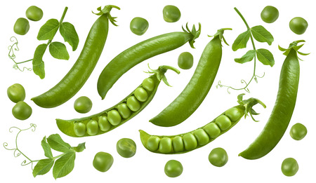 Green peas, pods and leaves set isolated on white background. Package design elements