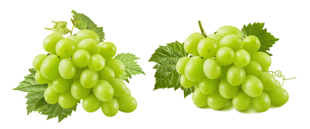 Bunches of green grapes with leaves isolated on white