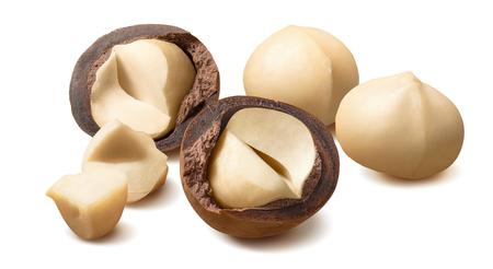 Peeled macadamia nuts isolated on white