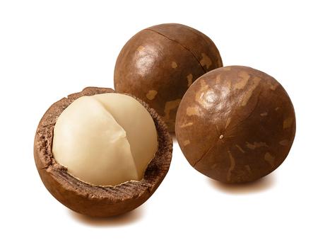Macadamia nuts. Peeled and in nutshells. Stock Photo