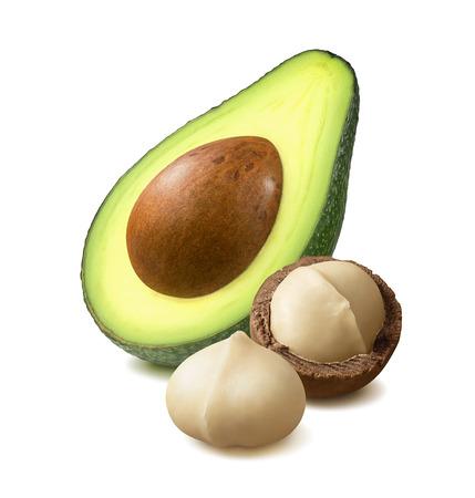 Avocado and peeled macadamia nut isolated on white Stok Fotoğraf