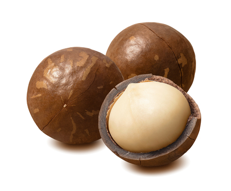 Whole macadamia nuts isolated on white Stock Photo