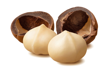 Peeled macadamia nuts and empty nutshells isolated on white Stock Photo