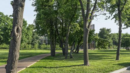City park landscape for landing page. Stok Fotoğraf