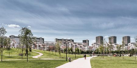 City park in summer.