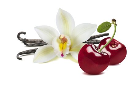 Vanilla flower and beans, sweet cherries isolated on white