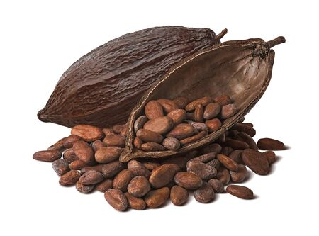 Whole and half cocoa pod with raw beans isolated on white