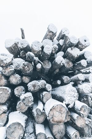 Big stack of snow covered pine logs. Vertical layout for winter stories Zdjęcie Seryjne - 138388591