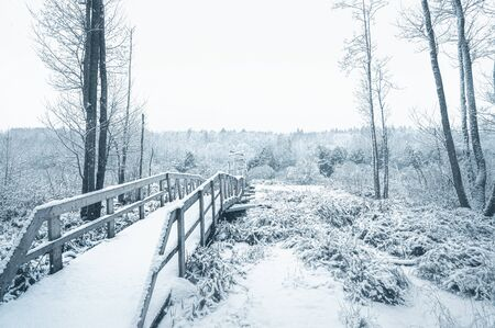 Beginning of a wooden bridge in the snow covered forest. Horizontal layout for winter holiday stories Zdjęcie Seryjne