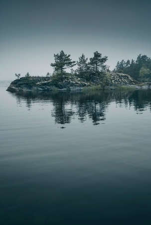 Small island with pine trees lost in the fog. Scenic view. Vertical layout