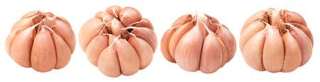 Fresh garlic heads set isolated on white