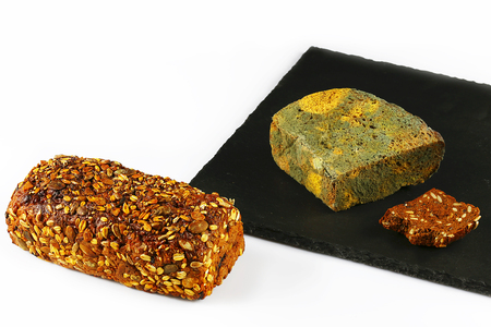 half a loaf of mouldy rye bread and fresh grain bread, on a black shale board isolated on white background, concept of inedible products, closeup, set.