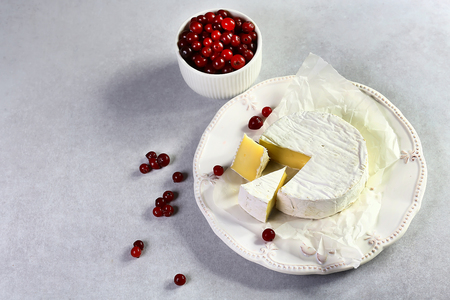Camembert with cranberry on white plate. Top side view, selective focus, close up. set. 写真素材
