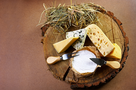 village composition of cheese from hay to tree, cheese with blue mildew, Camembert or brie cheese circle, Cheese Serving Knife. top view image with copy space, set. Reklamní fotografie