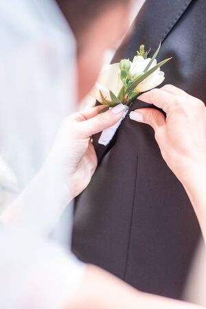 The brides hand puts on a boutonniere flower on the grooms jacket. Bride puts a buttonhole on a grooms suit. close-up. 写真素材