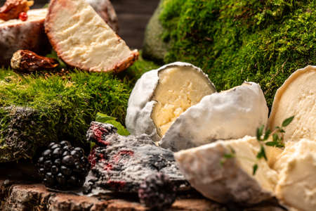 French goat cheese covered with ash, assortment of mature goat cheese, Food recipe background