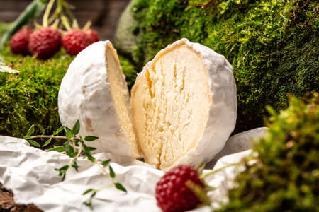 Camembert or brie cheese with raspberries, Gourmet Italian, French cheese