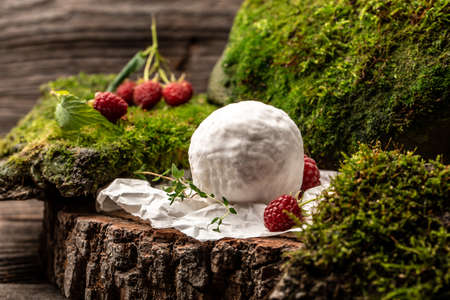 Camembert or brie cheese with raspberries, Gourmet Italian, French cheese, The concept of natural eco food, catering, banner, menu, recipe