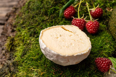 Camembert or brie french soft cheese with berries. Fresh brie cheese with white mold. banner, catering menu recipe place for text