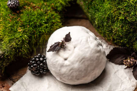 Camembert or brie french soft cheese with blackberry, basil. Fresh brie cheese with white mold. banner, catering menu recipe place for text 写真素材