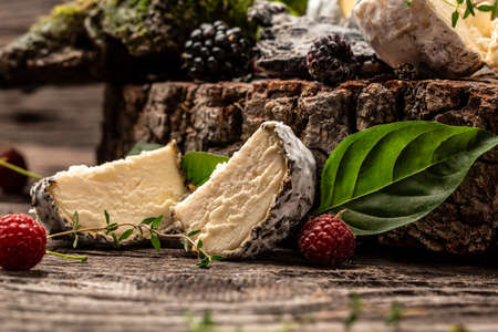 Camembert or brie french soft cheese with berry, basil. Fresh brie cheese with white mold. banner, catering menu recipe place for text