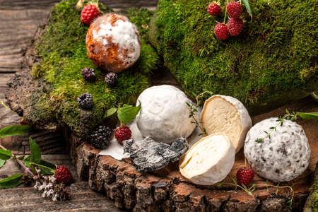 Fresh brie cheese with white mold. assortment of mature goat cheese, home made cheese farmer, The concept of natural eco food, catering, banner, menu, recipe, place for text 写真素材