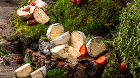 Blue cheese Soft french cheese of camembert, homemade cheese farmer, The concept of natural eco food, catering, banner, menu, recipe