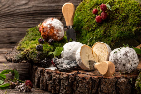 Different kinds of goat cheeses, Soft french cheese with ash, home made cheese farmer. The concept of natural eco food, catering, banner, menu, recipe 写真素材