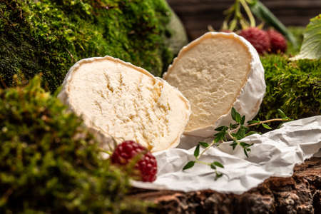Camembert or brie french soft cheese with berry, thyme. Fresh brie cheese with white mold. banner, catering menu recipe