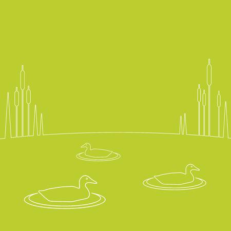 mere: Vector illustration of ducks  Illustration