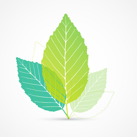 Leaf vector Stockfoto - 30431302