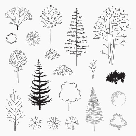 line vector: Set of vector abstract trees, line design, un-expanded strokes, ground plans and elevations, modern design, silhouette Illustration