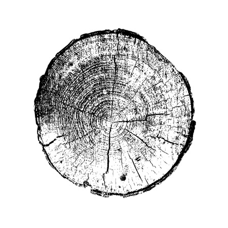 Pierścień drzewa, bali, drewna pnia. Czarny i biały. ilustracji wektorowych EPS 10 na białym tle