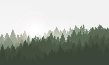 Waldhintergrund, Nadelbäume. Vektorillustration. Landschaft mit Sonnenaufgang