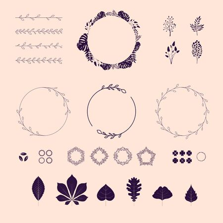 Floral elements set. Borders, leaves, icons, brushes