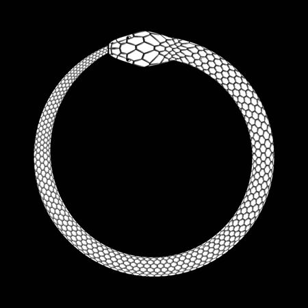 Ouroboros icon, detailed symbol of snake eating its own tail. White vector illustration EPS 10 矢量图像