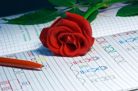 red rose with water drops on school notebook Stock Photo - 398215