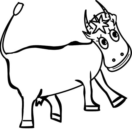 smiling happy cow on the white background photo