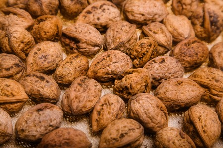 close up photo of walnut - textured background Stock Photo - 4187510