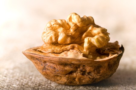 close up photo of walnuts on sacking  Stock Photo - 4187504
