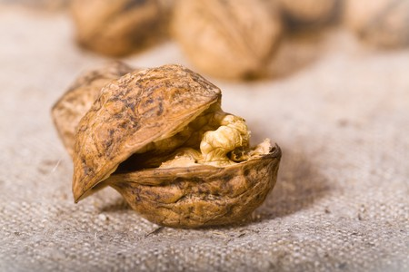 close up photo of walnuts on sacking  photo