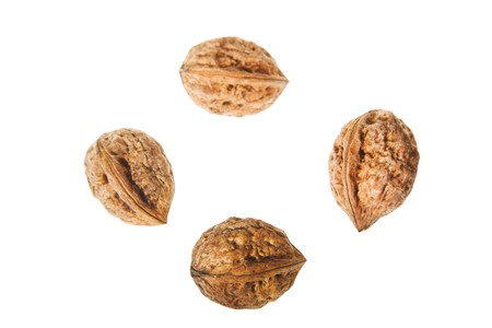 for whole walnuts isolated on white background Stock Photo - 4187486