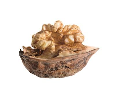 one whole walnut isolated on white background Stock Photo - 4234763