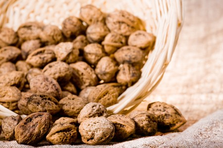 close up photo of walnut in basket Stock Photo - 4352573