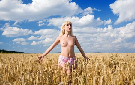 young beauty girl in the wheat field photo