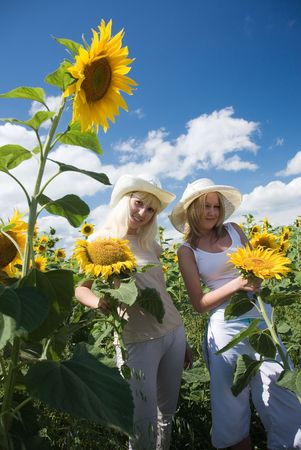 young happy girsl in the sunflower field  photo