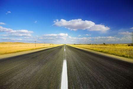 horizonte: Largo camino viajando a trav�s de un campo de oto�o
